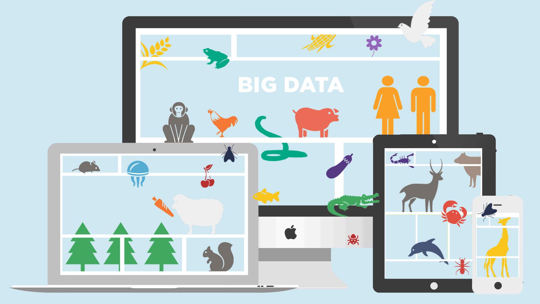 El Big Data gana seguidores entre los empresarios del sector turístico.
