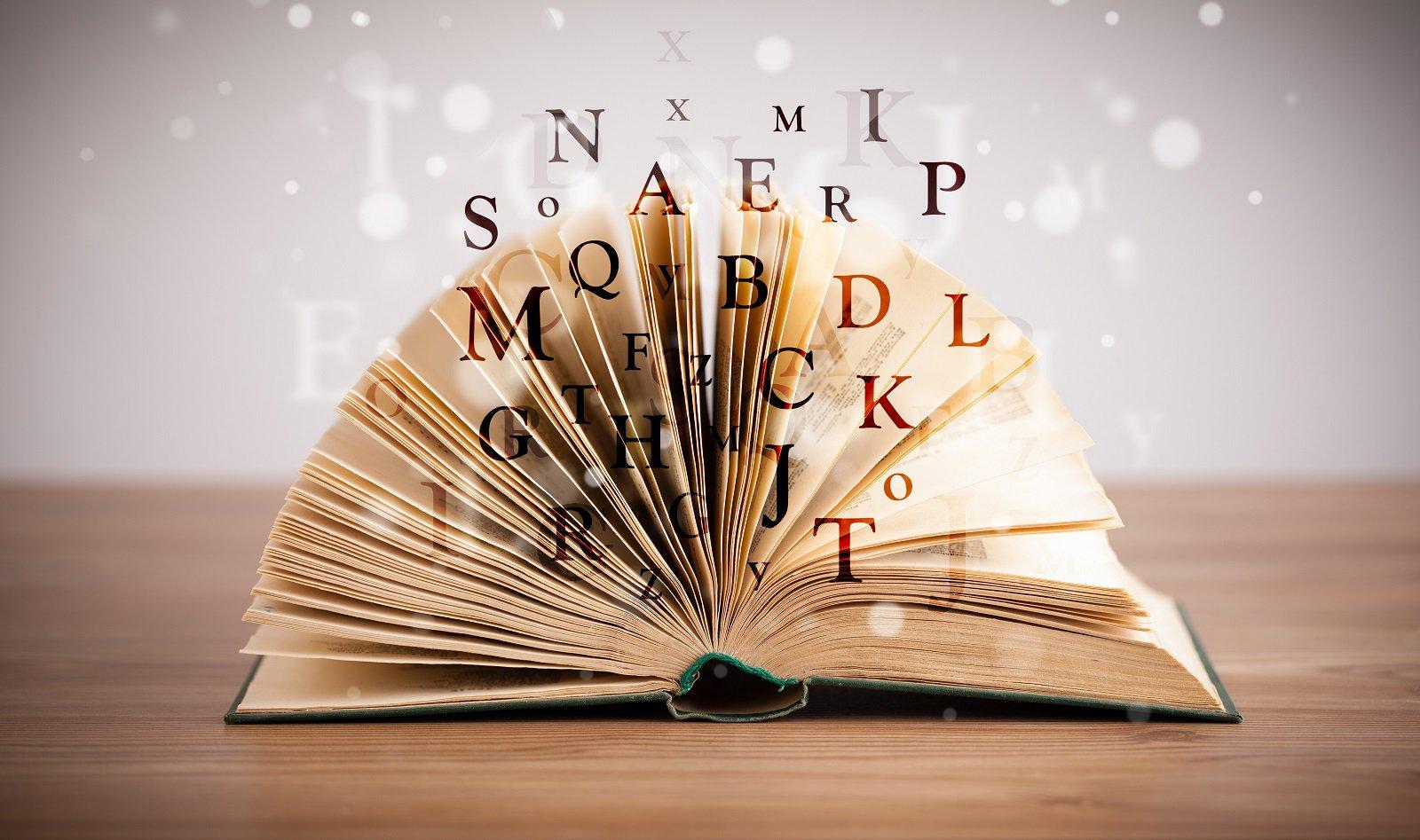 Cinco libros que no debes de dejar de leer en el 2017